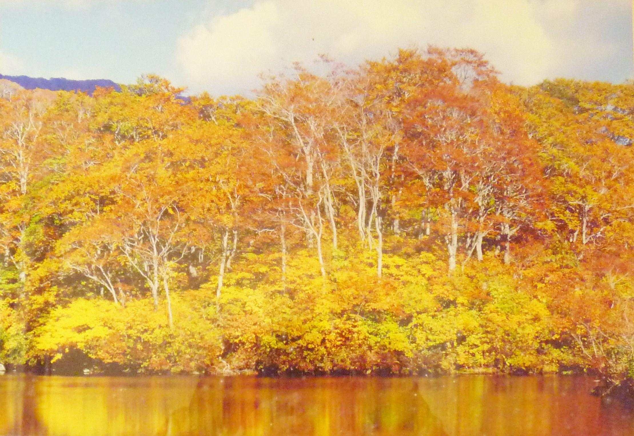 風景写真3